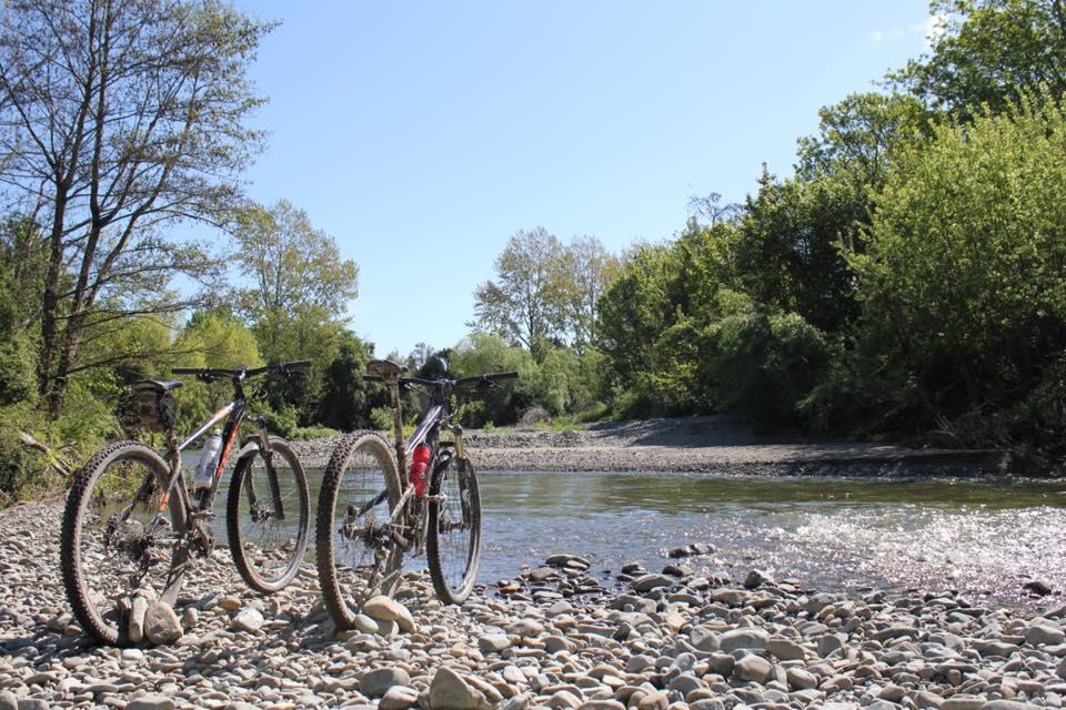 Mountain Biking in Geraldine
