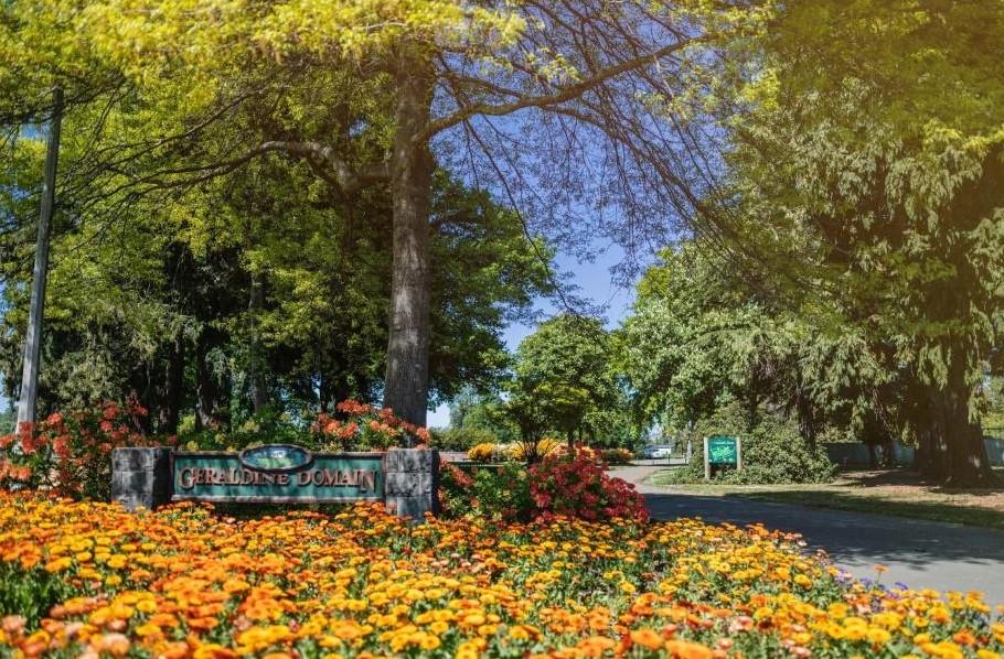 Geraldine Domain in bloom