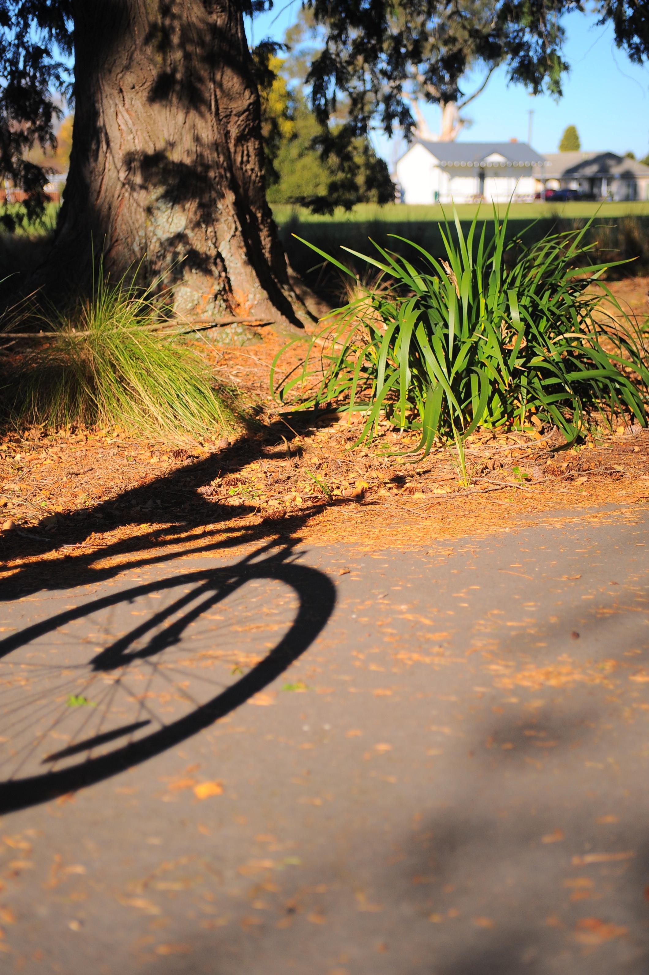 Bikes in the Sun, Geraldine