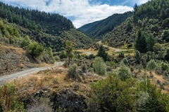 Geraldine Landscape