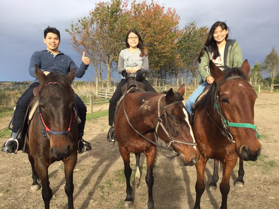 Horse Trekking Geraldine