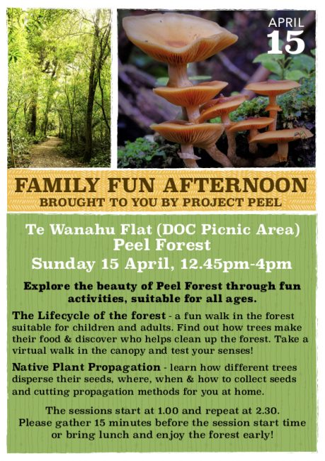 Project Peel Family Activities Day